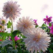 Among The Flowers Art Print