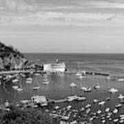 Avalon Harbor - Catalina Island, California Art Print