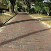 Brick Road In Palatka Florida Art Print