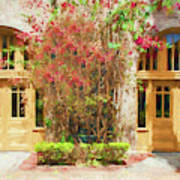 Courtyard Doors St Augustine 002 Art Print