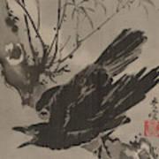Crow On A Branch Art Print