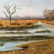 Early Spring On The Marsh Art Print
