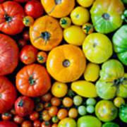 Fresh Heirloom Tomatoes Background Art Print