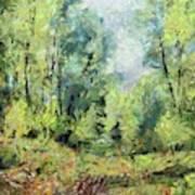 On The Edge Of The Marsh Art Print
