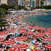 Overhead Of Red Sun Umbrellas At Art Print