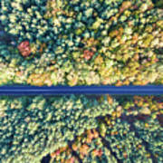 Road Through Colorful Autumn Forest Art Print