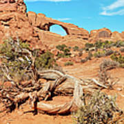 Skyline Arch, Arches National Park Art Print