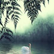Tropical Splendor Art Print