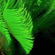 Waves Of Green Art Print