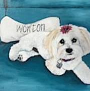 Wonton Art Print
