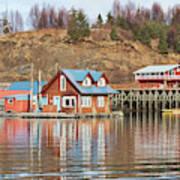 Halibut Cove Kenai Peninsula Alaska Art Print