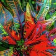 Plants And Leaves Hawaii Art Print