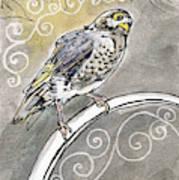 2018 Septembird 16 Myna Bird Art Print