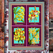 Antique Orchids Quatro On Rusted Metal And Weathered Wood Plank Art Print