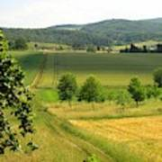 Photograph Of A Field In Germany Art Print