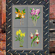 Orchids Antique Quadro Weathered Plank Rusty Metal Art Print