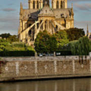 Morning Light On Cathedral Notre Dame Art Print