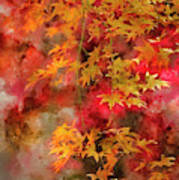 Digital Watercolor Painting Of Beautiful Colorful Vibrant Red An Art Print