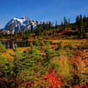 Autumn Colors With Mount Shuksan Art Print