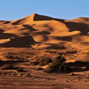 A Caravan In The Desert Art Print