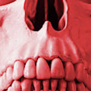 A Close Up Of A Human Skull In Red Art Print