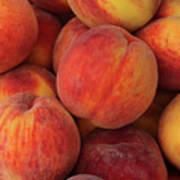 A Heap Of Ripe Peaches Prunus Persica Art Print