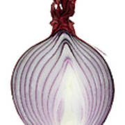 A Red Onion Cut In Half On White Art Print