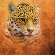 African Leopard Art Print