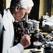 Alexander Fleming At Microscope Art Print