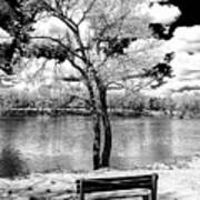 Along The River At Washington Crossing In New Jersey Art Print