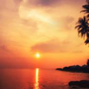 Amazing Colors Of Tropical Sunset Art Print