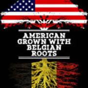 American Grown With Belgian Roots Art Print