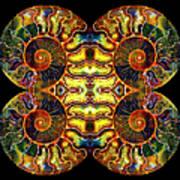Ammonite Mandela - 044.1 Art Print