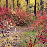 An Autumn Bike Trek Art Print