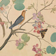 An Orange Headed Ground Thrush And A Moth On A Purple Ebony Orchid Branch, 1778 Art Print