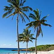 Anakena Beach, The Islands White Sand Art Print