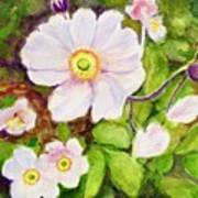Anemones Birthday Card Art Print