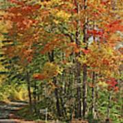 Appalachian Backroads Art Print