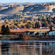 Apple Country Along The Columbia River Art Print