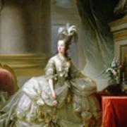 Archduchess Marie Antoinette  Art Print