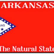 Arkansas State License Plate Art Print