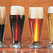 Assorted Beers And Ales Art Print