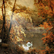 Autumn Afterglow Art Print