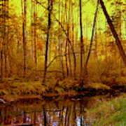 Autumn - Krasna River Art Print