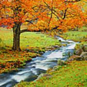 Autumn In Vermont G Art Print