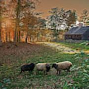 Autumn Sunset At The Old Farm Art Print