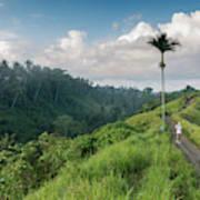 Bali Pathway Art Print