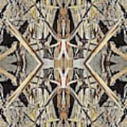 Bark Laces Art Print