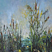 Bays Of The River Art Print