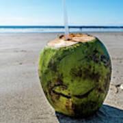 Beach Coconut Art Print